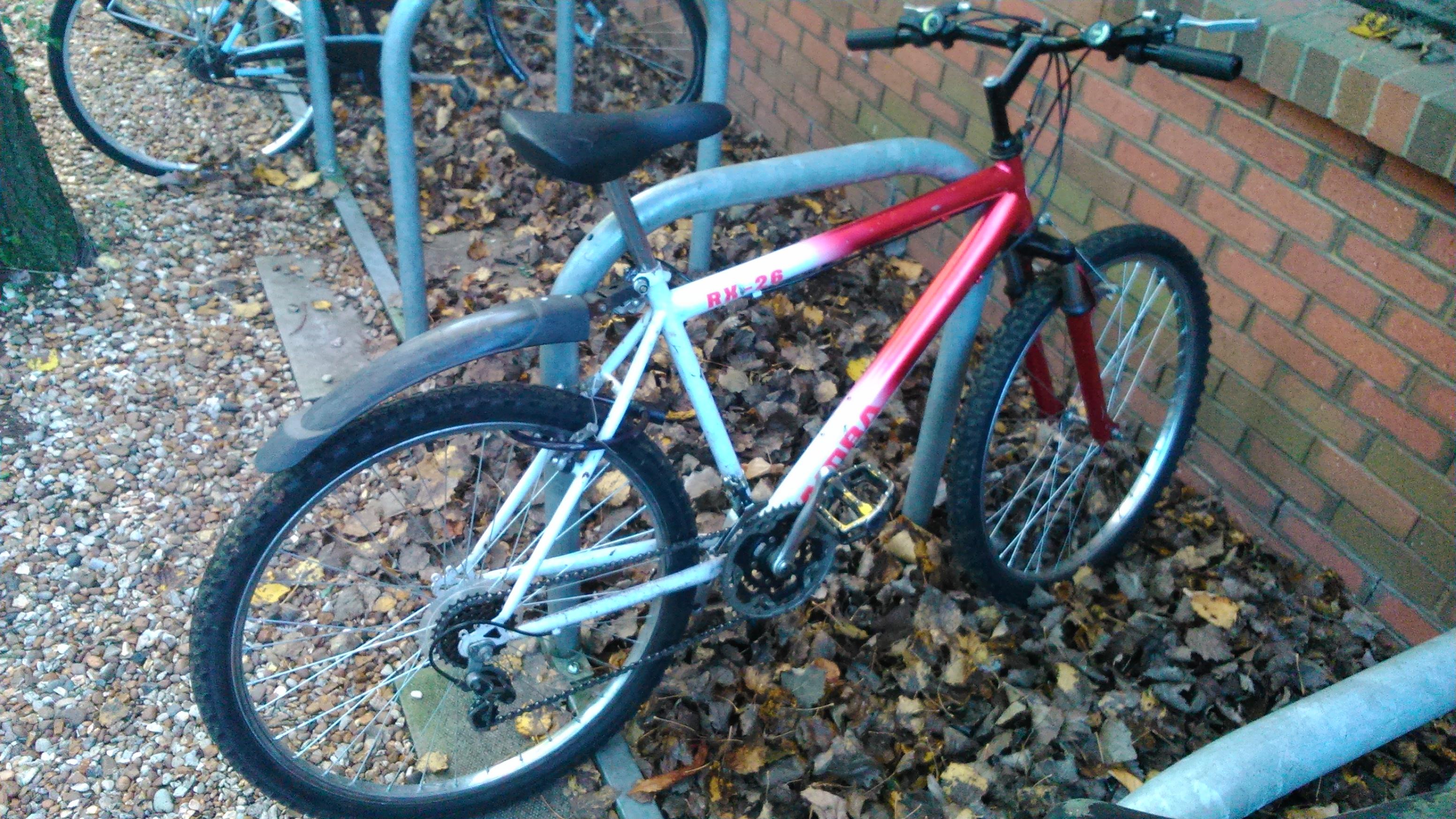 Mi nueva bici
